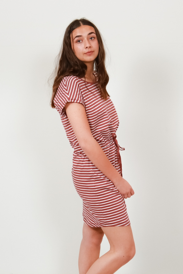 ONLMAY LIFE S/S DRESS NOOS Apple Butter/THIN STRIPE CLOUD DANC